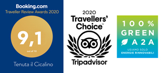 booking tripadvisor green a2a